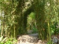 isla-verde-hotel-ecologique-jardins02