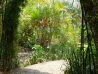 isla-verde-hotel-ecologique-jardins04