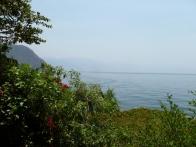 isla-verde-hotel-ecologique-jardins08