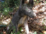 Statue de loup