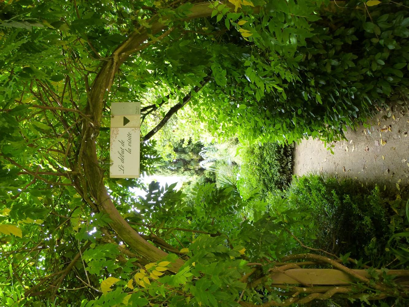 paresse et contemplation au parc botanique de haute bretagne foug res. Black Bedroom Furniture Sets. Home Design Ideas