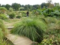 parc-botanique-haute-bretagne-jardins-crepuscule-02