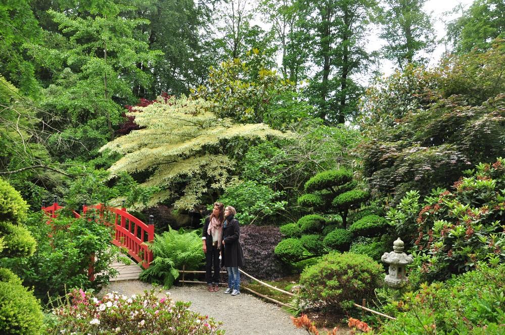 Paresse et contemplation au parc botanique de haute bretagne foug res - Jardins de bretagne a visiter ...