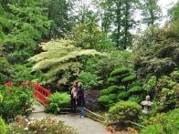 parc-botanique-haute-bretagne-jardins-romantiques-00