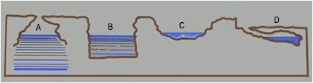 typographie cenotes