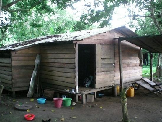 Cabane de Bosko, le responsable des chimpanzés sur l'île