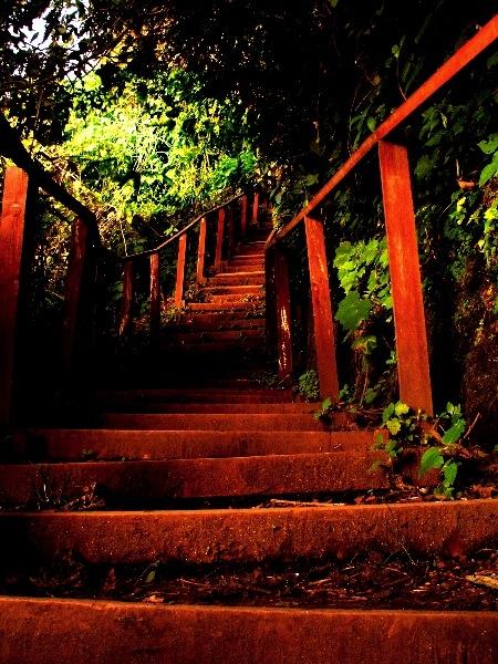 Les escaliers conduisant à la lagune