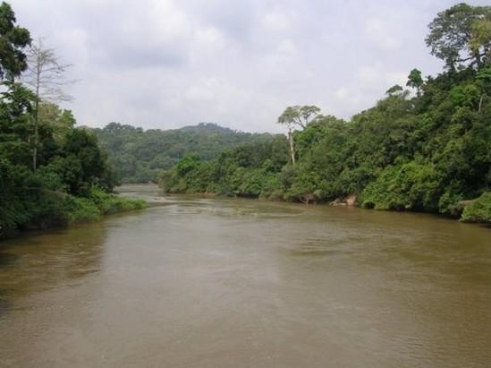 Le fleuve Sanaga, près de l'île de Pongo