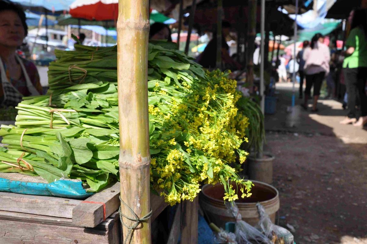 Stand de fleurs comestibles, Chiang Mai (Thaïlande)