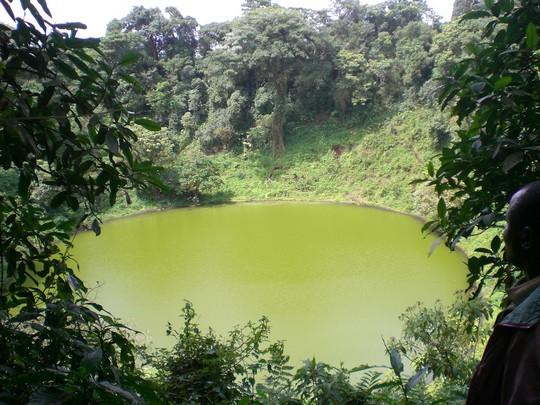 Lac aux éléphants du Mont Cameroun