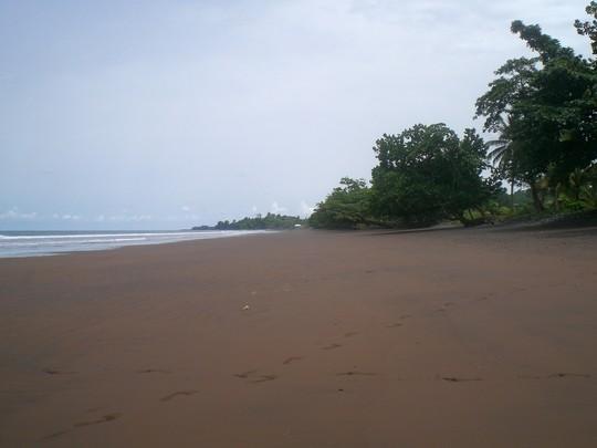 Plage volcanique de sable noir de Limbé
