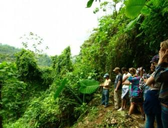 Tourisme communautaire à « Santa Anita la Unión » : immersion en terre maya