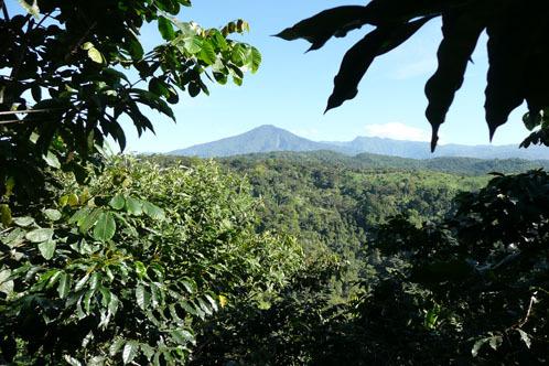 Les paysages quetzaltèques, verdoyants et volcaniques