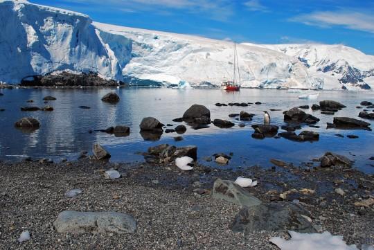 Antarctique_2©AnneRecoules