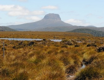 Voyage nature en Australie : à la découverte de deux lieux encore préservés