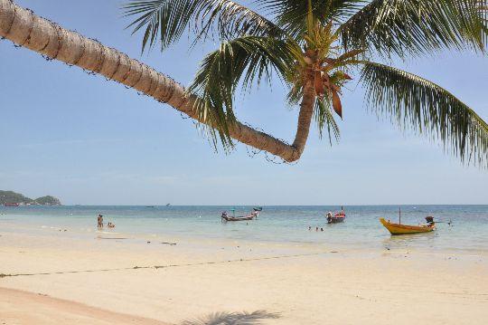 Une plage de Thaïlande, à Koh Phangan