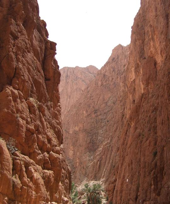 Les falaises des gorges de Todra