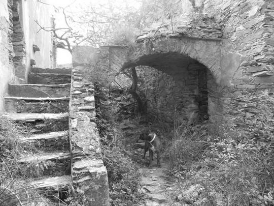 corse-insolite-village-abandonne-caracu-02