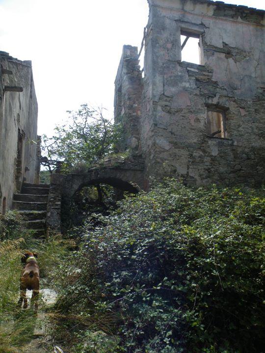 http://www.voyageurs-du-net.com/wp-content/uploads/2013/05/corse-insolite-village-abandonne-caracu-06.jpg