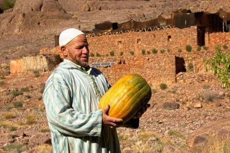 hotel-ecologique-maroc-ouednoujoum-hassan