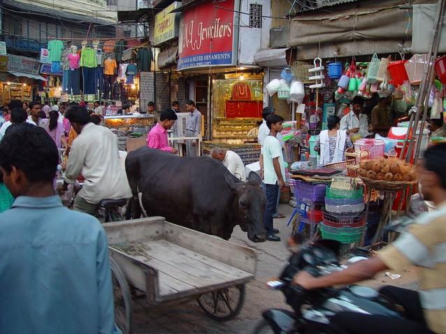 Vue du <i>Main Bazaar<:i> de Delhi