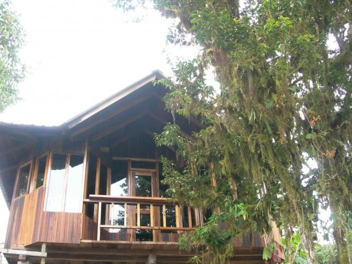 http://www.voyageurs-du-net.com/wp-content/uploads/2013/06/santa-lucia-equateur-hotel-ecologique-cabane-arbres-700x525.jpg
