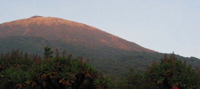 Le Mont Karisimbi depuis la jungle rwandaise