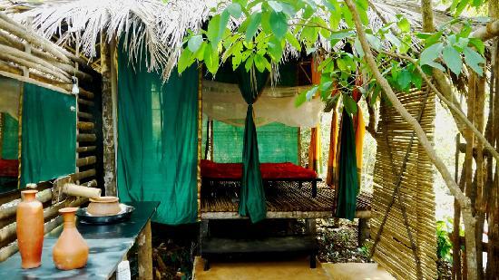 http://www.voyageurs-du-net.com/wp-content/uploads/2013/11/kaama-kethna-ecological.jpg