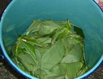 tamal-arroz-marmite-01