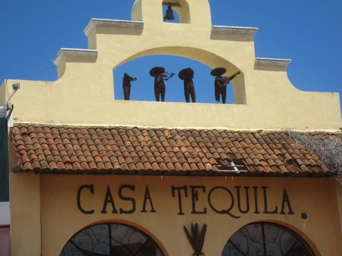 """""""Casa Tequila"""" : beau comme la rencontre fortuite sur le sol mexicain d'une chanson de Lorie et d'un agave"""