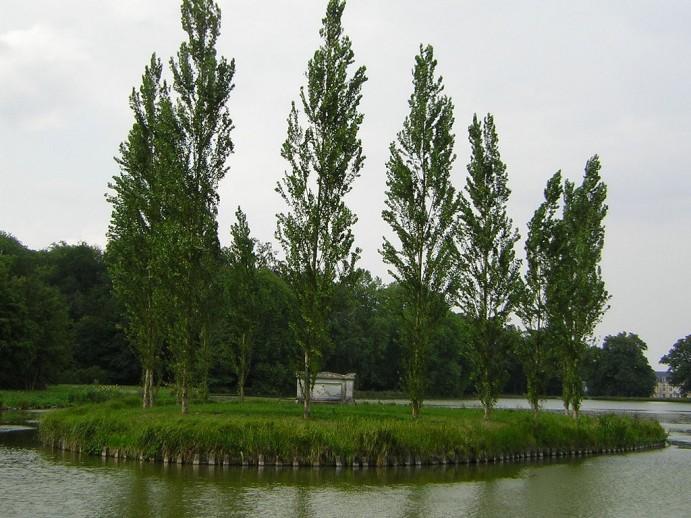 021-parc-jean-jacques-rousseu-ermenonville-Parisette