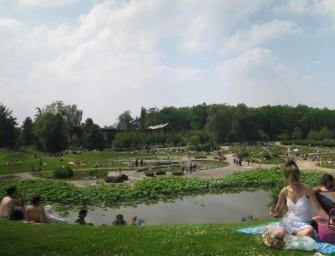 Concerts et oisiveté au Parc floral de Paris