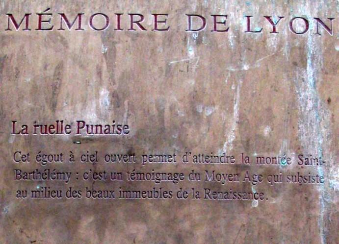 ruelle-punaise-credit-dvalot.free.fr