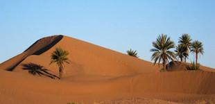 Désert Maroc