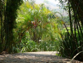 Lac Atitlan : la Isla Verde, hôtel écologique (04). Crédit : Mikaël Faujour