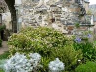 abbaye-beauport-tourisme-bretagne-nord-galerie-07