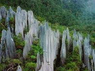 gunung-mulu-borneo-malaisie-visiter-03-jpg