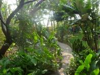 isla-verde-hotel-ecologique-jardins01