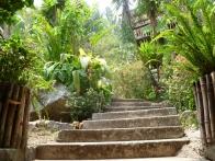 isla-verde-hotel-ecologique-jardins05