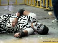 lucha-libre-cholita-wrestling-catch-feminin-la-paz-bolivie-06