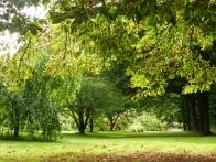 parc-botanique-haute-bretagne-arcadie-07
