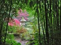 parc-botanique-haute-bretagne-jardins-romantiques-01