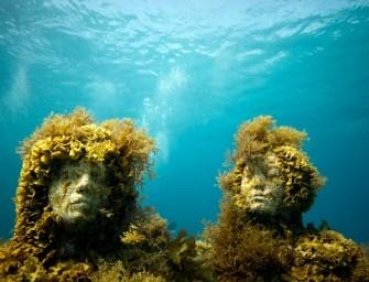« The silent evolution »  : un peuple enfoui sous la mer du Mexique
