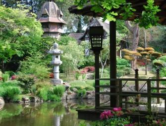 Le Parc Oriental de Maulévier : le parc japonais le plus grand d'Europe